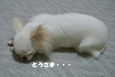 蟆城未+1127_convert_20121001132320