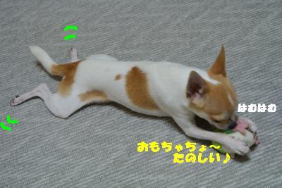 蟆城未+1125_convert_20121001132425