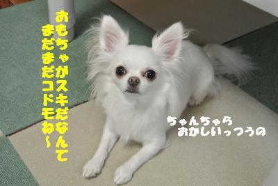 蟆城未+1251_convert_20121004133910