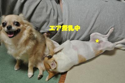 蟆城未+1148_convert_20121005104536