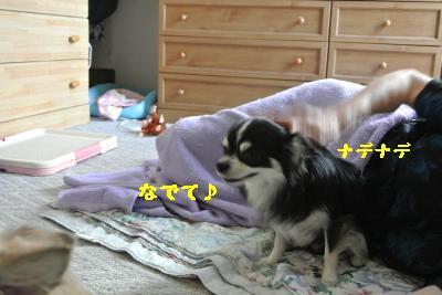 20120917豌エ荳・142_convert_20121008174017