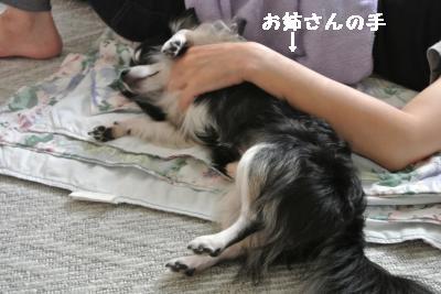 20120917豌エ荳・155_convert_20121008174121