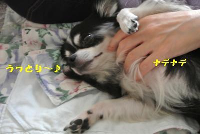 20120917豌エ荳・156_convert_20121008174155