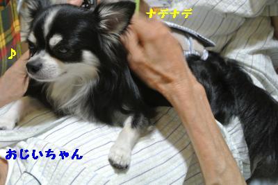 20120917豌エ荳・167_convert_20121008174337