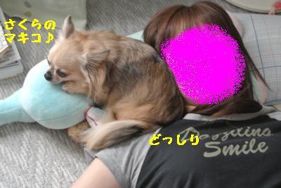 20120917豌エ荳・154_convert_20121008174501