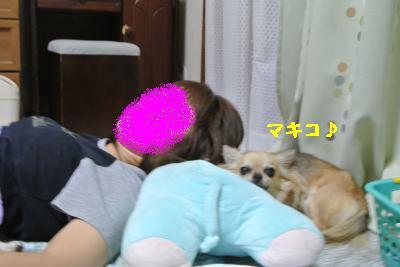 20120917豌エ荳・163_convert_20121008174421