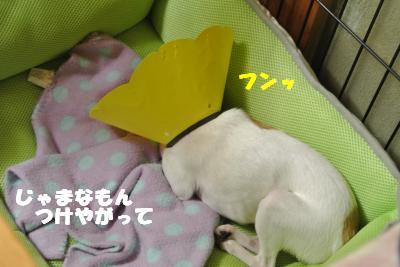蟆城未+022_convert_20121010094721