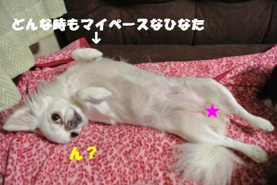 蟆城未+035_convert_20121011093824