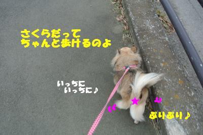 20121017+010_convert_20121017102638.jpg