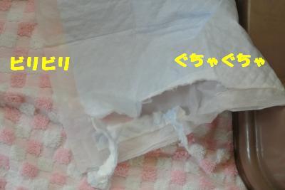 20121017+012_convert_20121018105353.jpg