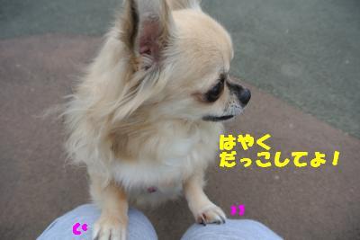 20121017+016_convert_20121017102809.jpg