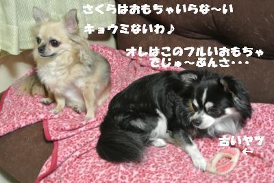 20121017+023_convert_20121023104425.jpg
