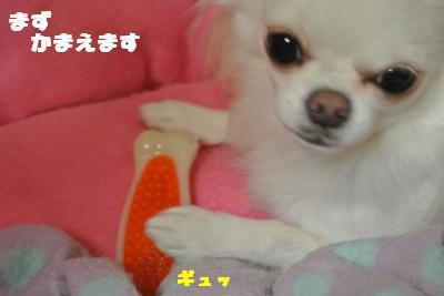 20121023+004_convert_20121025101532.jpg