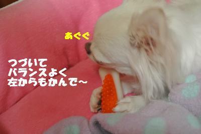 20121023+006_convert_20121025101646.jpg