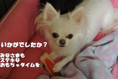 20121023+011_convert_20121025103615.jpg