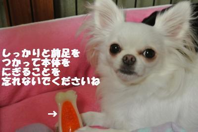 20121023+014_convert_20121025101925.jpg