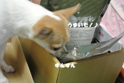 20121026+005_convert_20121026111406.jpg
