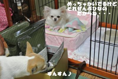 20121026+006_convert_20121026111535.jpg