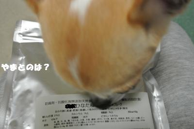 20121026+009_convert_20121026111704.jpg