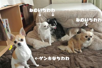 20121101+001_convert_20121108101041.jpg