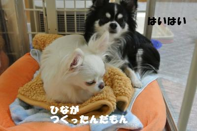 20121101+015_convert_20121106091216.jpg