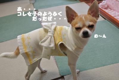 20121101+038_convert_20121105100641.jpg