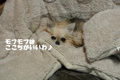 20121101+052_convert_20121105132750.jpg