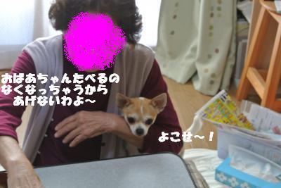 20121109+004_convert_20121112153521.jpg