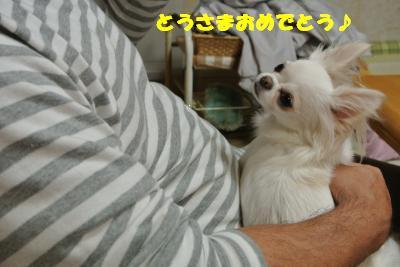 20121109+028_convert_20121112095651.jpg