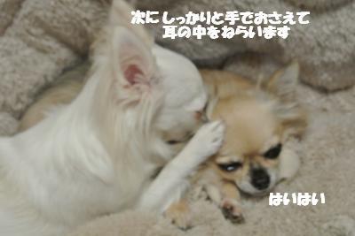 20121119+007_convert_20121121113735.jpg