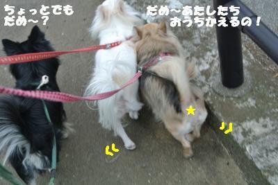 20121120+008_convert_20121120153741.jpg