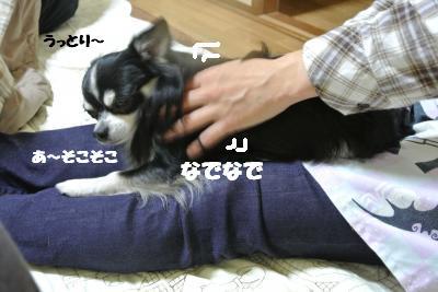 20121126+003_convert_20121130102351.jpg