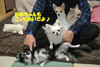 20121126+012_convert_20121129094141.jpg