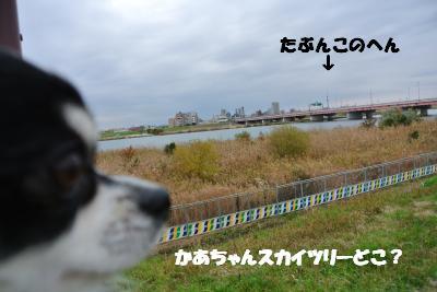 20121203+024_convert_20121203103241.jpg