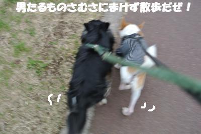 20121203+025_convert_20121203103306.jpg