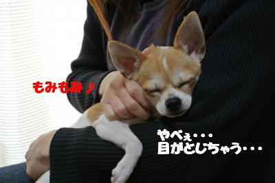 20121210+001_convert_20121210104637.jpg