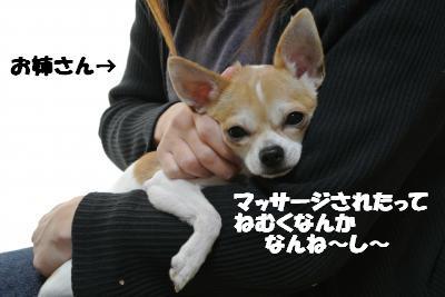 20121210+002_convert_20121210104709.jpg