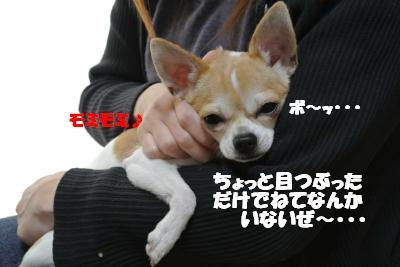 20121210+003_convert_20121210104735.jpg