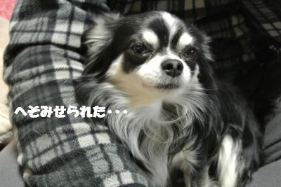 20121212+007_convert_20121212110046.jpg