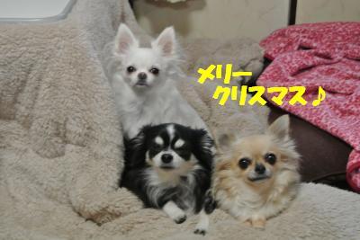 20121217+001_convert_20121221161933.jpg