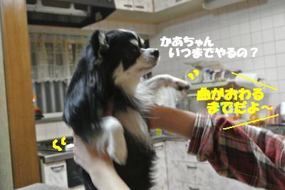 20121218+004_convert_20121218133236.jpg