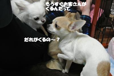 20121227+005_convert_20121227133006.jpg