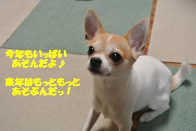 20121227+008_convert_20121227093553.jpg