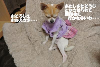 20130107+035_convert_20130107105035.jpg