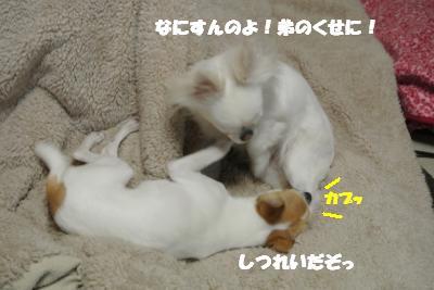 20130226+008_convert_20130226104317.jpg