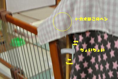 20130415+009_convert_20130415110725.jpg