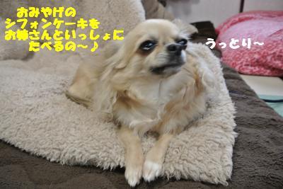 20130419+004_convert_20130419102749.jpg