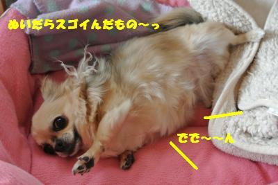 20130423+020_convert_20130425095237.jpg
