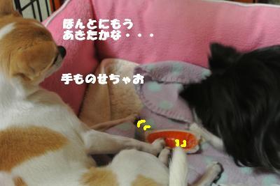 20130508+014_convert_20130508103423.jpg