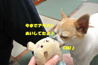 20130508+016_convert_20130508141753.jpg